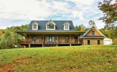 Pickens Single Family Home For Sale: 298 Holly Springs School Road