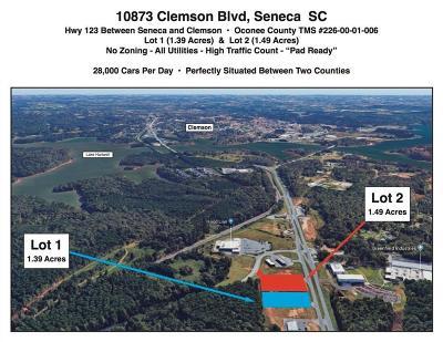 Seneca Commercial For Sale: 10873 Clemson Boulevard