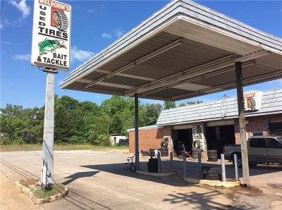 Anderson Commercial For Sale: 337 Shockley Ferry Road