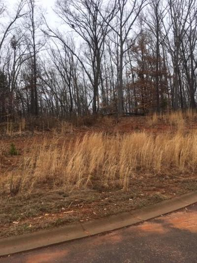 Easley Residential Lots & Land For Sale: 255 Audubon Acres Drive