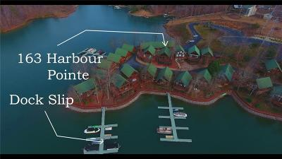 Pickens County Single Family Home For Sale: 163 Harbour Pointe