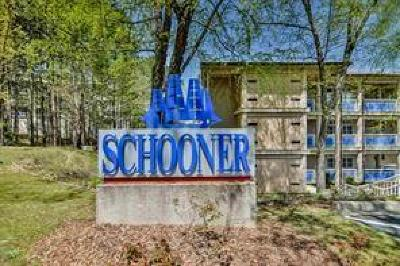 Oconee County, Pickens County Condo For Sale: 503 Tall Ship Drive