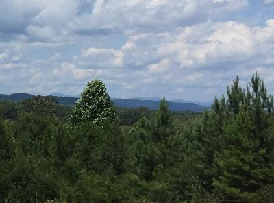 Oconee County, Pickens County Residential Lots & Land For Sale: 00 Coffee Road