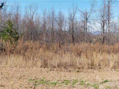 Easley Residential Lots & Land For Sale: 931 Old Dacusville Road