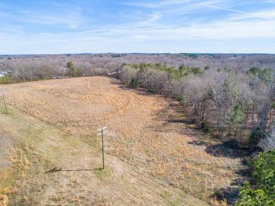 Fountain Inn Residential Lots & Land For Sale: 780 Chapman Road