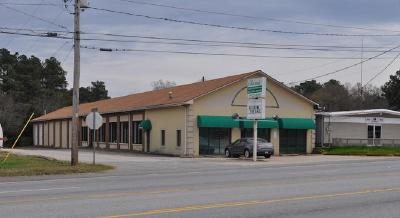 Anderson Commercial For Auction: 516 Pearman Dairy Road