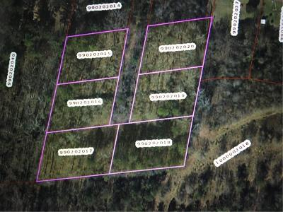 Anderson Residential Lots & Land For Sale: 134 Tate Drive