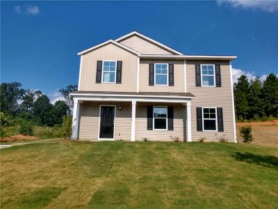 Clemson, Seneca Single Family Home For Sale: 883 Louie Lane