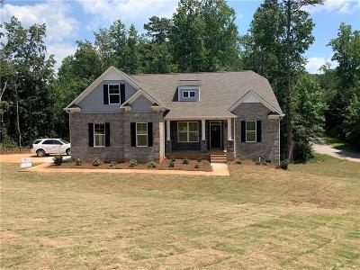 Easley Single Family Home For Sale: 199 Upper Lake Drive