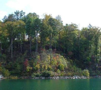 Salem Residential Lots & Land For Sale: 557 Shooting Tree Way