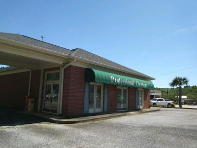 Anderson Commercial For Sale: 1504 E Greenville Street
