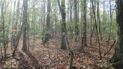Residential Lots & Land For Sale: 0000 The Bear Boulevard