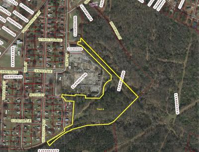 Anderson Residential Lots & Land For Sale: 00 Riley Street