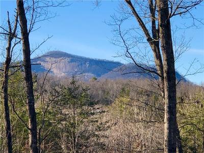 Oconee County, Pickens County Residential Lots & Land For Sale: 00 Pumpkintown Highway