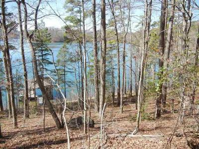 Residential Lots & Land For Sale: 113 Echo Point Court