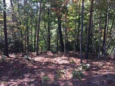 Residential Lots & Land For Sale: 231 S Lake Drive
