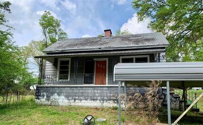 Pelzer Single Family Home For Sale: 24 Burts Street