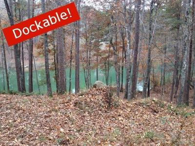 Residential Lots & Land For Sale: 11 Governor Court