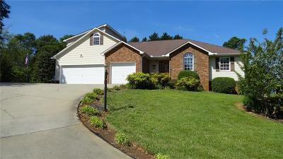 Anderson County, Oconee County, Pickens County Single Family Home For Sale: 905 Mountainview Place