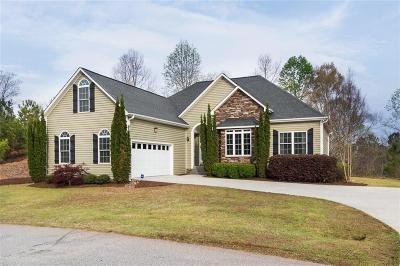 Single Family Home For Sale: 464 Twin View Drive