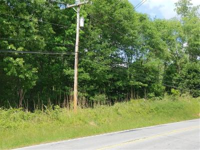 Easley Residential Lots & Land For Sale: 0000 Greenville Highway