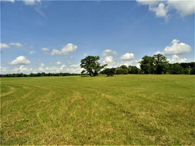 Anderson County Residential Lots & Land For Sale: 380 Murphy Road