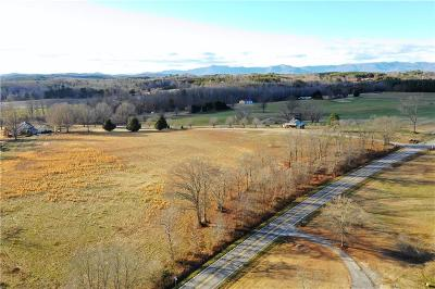 Easley Residential Lots & Land For Sale: 00 Griffin Road