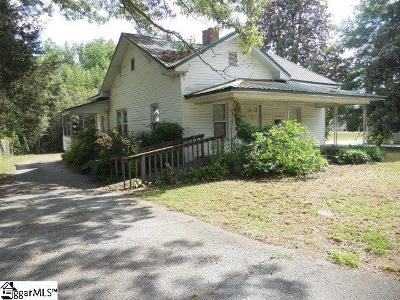 Easley Single Family Home For Sale: 407 Gentry Memorial Highway
