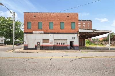 Anderson Commercial For Sale: 240 E Whitner Street