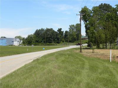 Walhalla Commercial For Sale: .89ac Earle Street