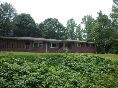 Anderson County Single Family Home For Sale: 4213 Hembree Creek Road