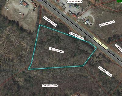 Anderson Commercial For Sale: 28 Bypass
