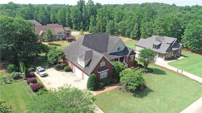 Easley Single Family Home For Sale: 205 Golden Willow Court