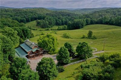 Lavonia, Martin, Toccoa, Fair Play, Westminster Single Family Home For Sale: 455 Mill Shoals Road