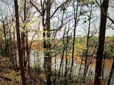 Anderson County, Oconee County, Pickens County Residential Lots & Land For Sale: 2156 Deloach Drive