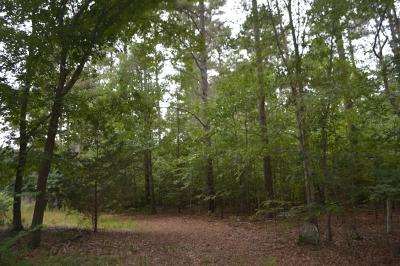 Anderson County Residential Lots & Land For Sale: 713 Mayfield School Road
