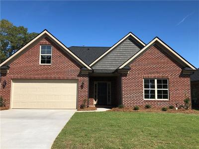 Easley Single Family Home For Sale: 106 Pleasant Hill Drive