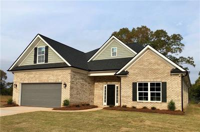 Easley Single Family Home For Sale: 110 Pleasant Hill Drive