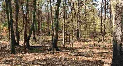 Greenville Residential Lots & Land For Sale: 24 Laurel Drive