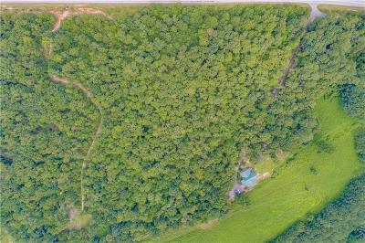 Oconee County, Pickens County Residential Lots & Land For Sale: 8370 N Highway 11