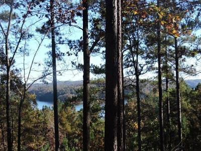Cliffs At Keowee Falls North, Cliffs At Keowee Falls South Residential Lots & Land For Sale: 333 Long Cove Trail