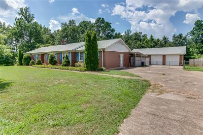 Greenville County Single Family Home For Sale: 325 Emily Lane