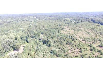 Anderson County Residential Lots & Land For Sale: Tr B 29 N Highway