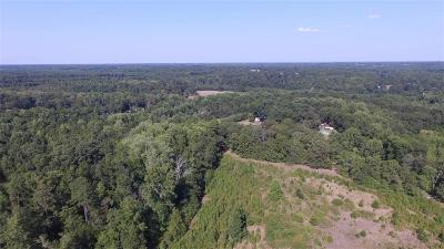 Anderson County Residential Lots & Land For Sale: Tr A2 29 Highway