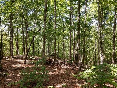 Oconee County, Pickens County Residential Lots & Land For Sale: 106 Sawyer Lane