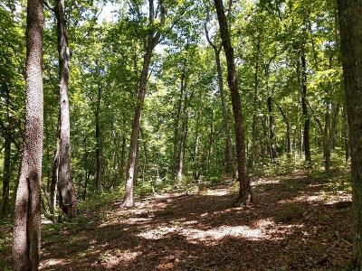 Oconee County, Pickens County Residential Lots & Land For Sale: 107 Sawyer Lane