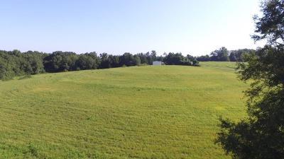 Oconee County, Pickens County Residential Lots & Land For Sale: 00 Roanoke Road