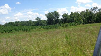 Oconee County, Pickens County Residential Lots & Land For Sale: 706 Mile Creek Road