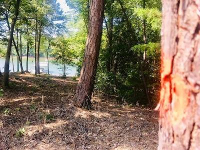 Fair Play Residential Lots & Land For Sale: Lakeside Trail