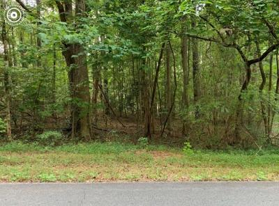 Anderson County Residential Lots & Land For Sale: 1-2-3 Saluda Road